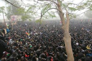 اربعین 2015 نیجریه